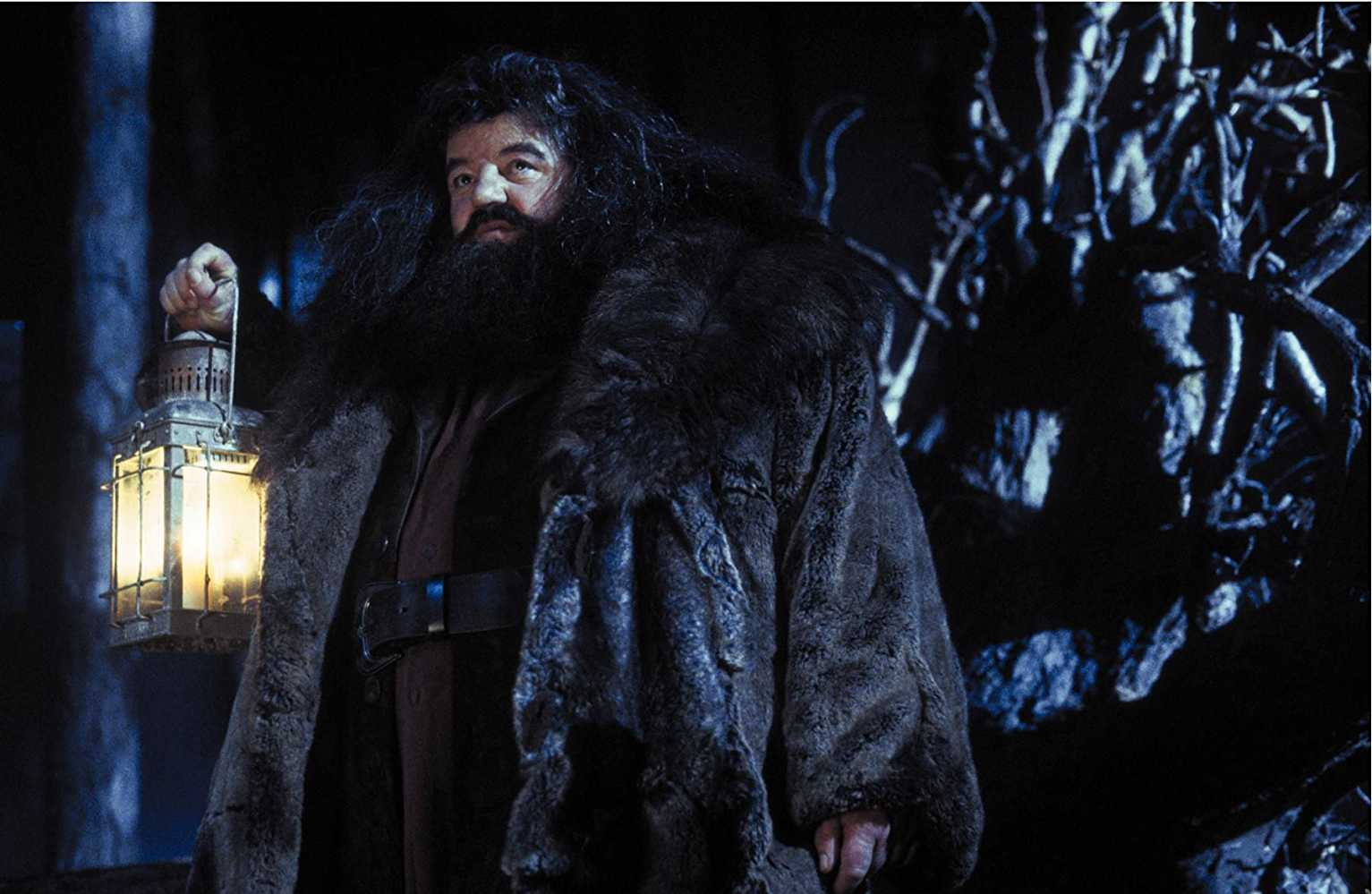 Robbie Coltrane as Rubeus Hagrid in Harry Potter and the Philosopher's Stone (Source: IMDb)