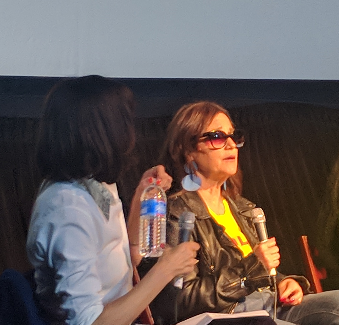 Sharon Oreck speaks at the music video production panel for the 2018 Female Filmmakers Festival.