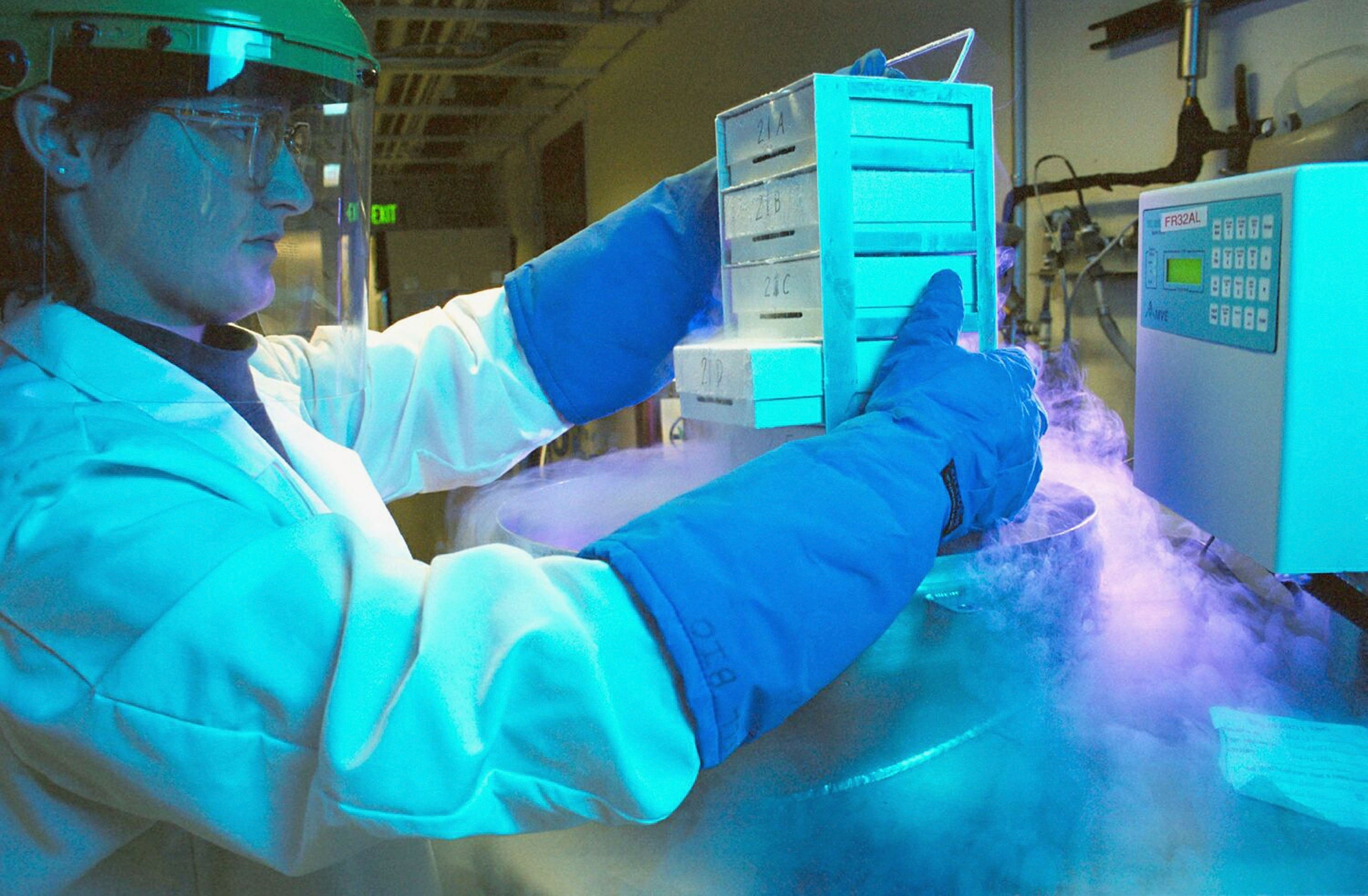 In this undated handout photo from Schering AG, a technician withdraws deep-frozen cells for in-vitro culturing at a laboratory of German pharmaceutical giant Schering. According to news reports March 13 German drug company Merck has launched a 14.6 billion Euros hostile takeover bid for Schering.