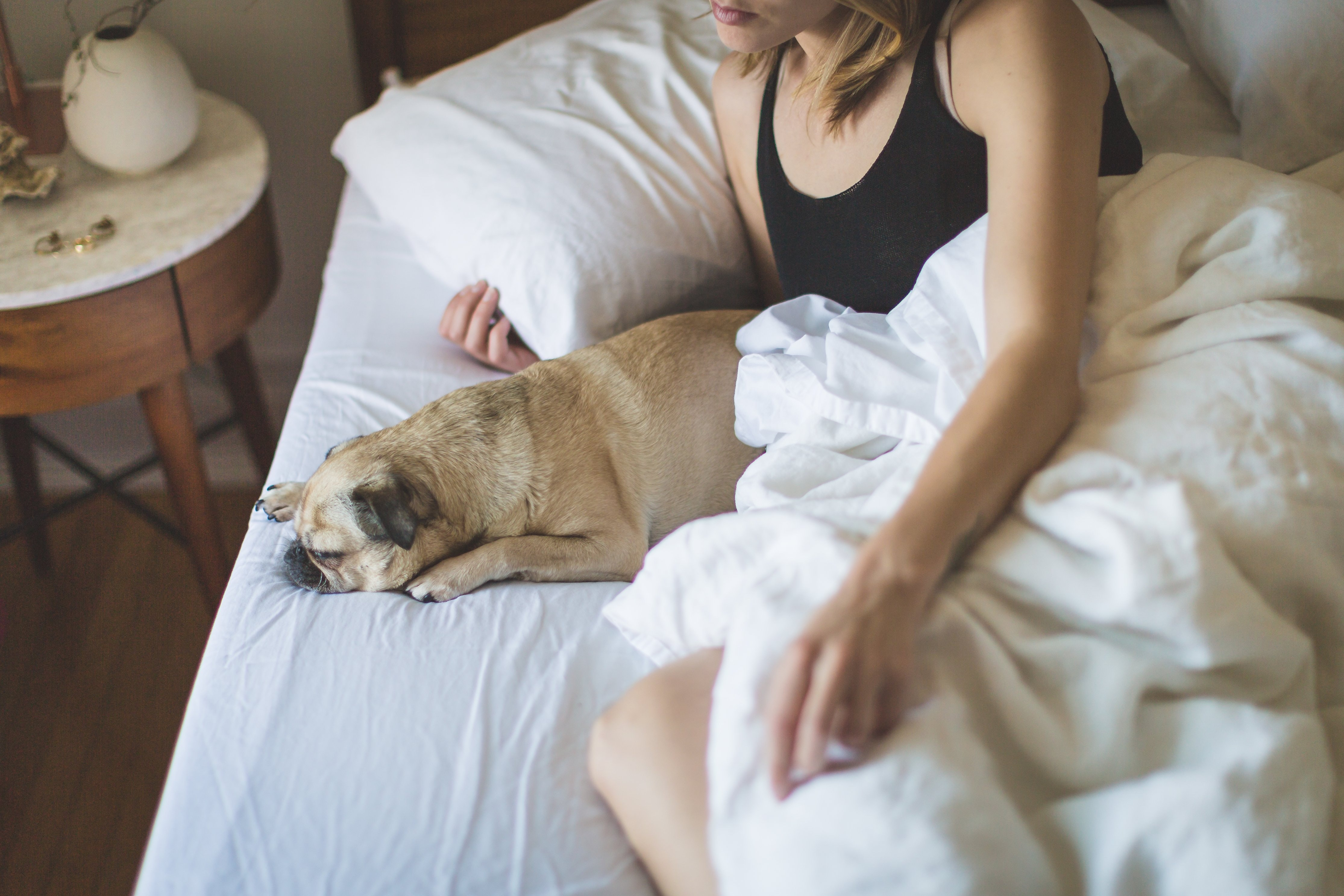 Dogs are said to be less unsettling as a sleeping companion when compared to men. (Source: Pexels)
