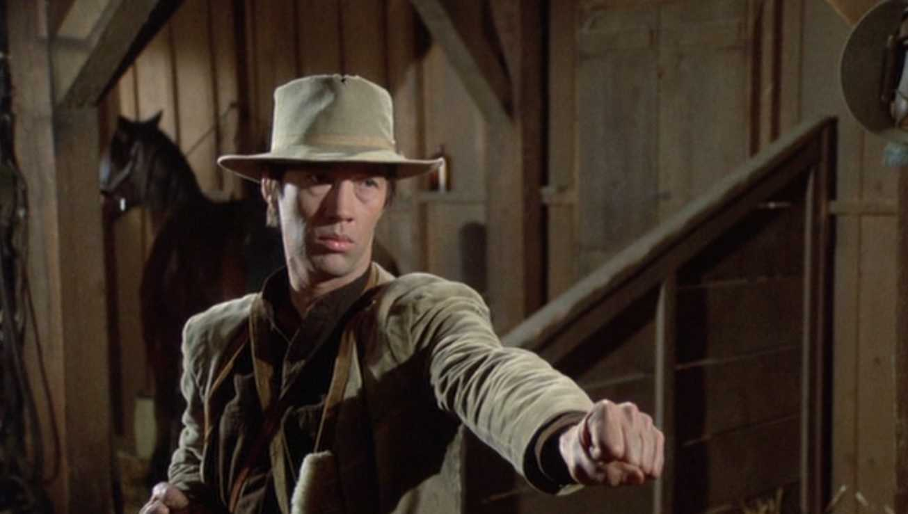 David Carradine bagged a role quite similar to what Bruce Lee had proposed (IMDb)