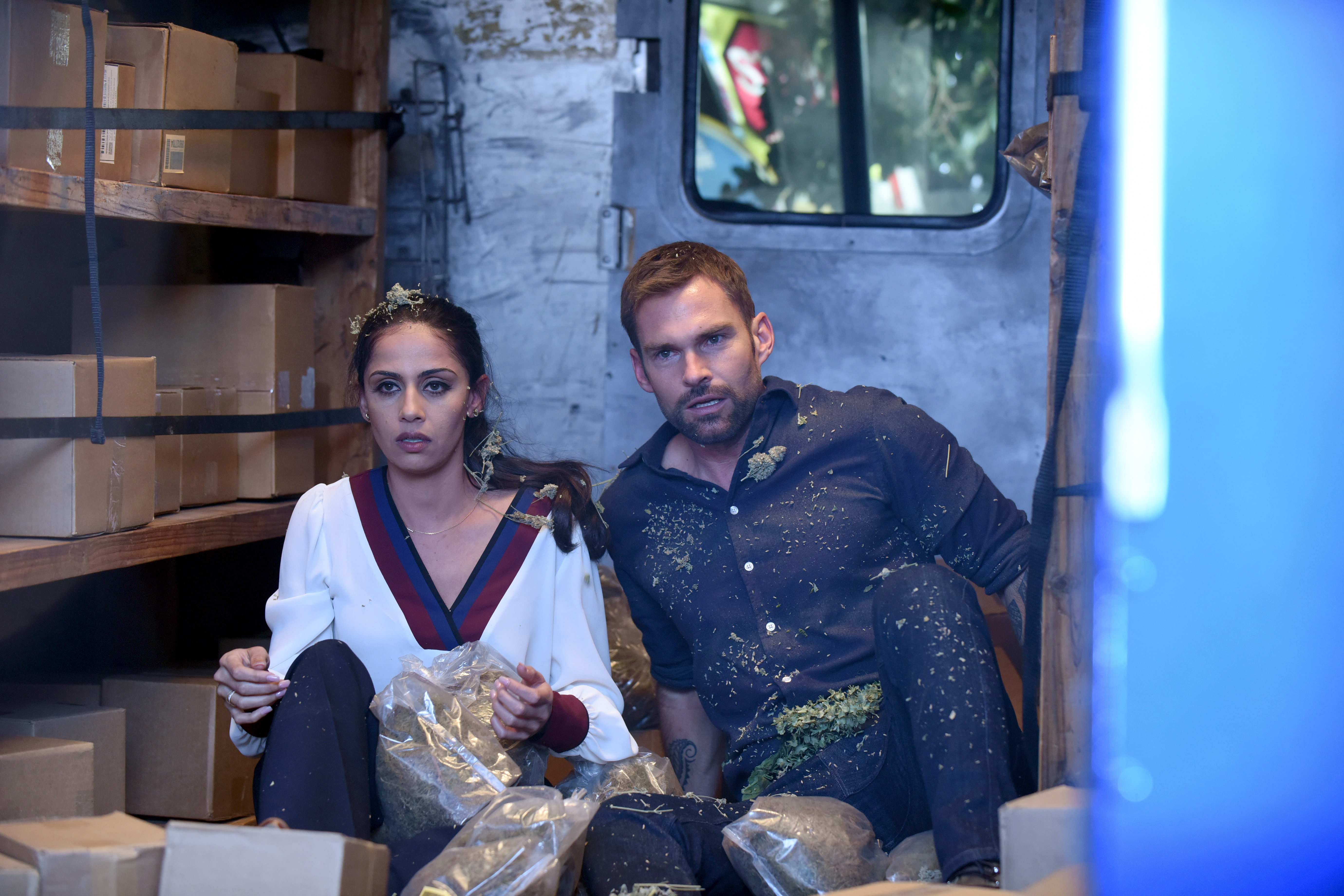 Nishi Munshi and Seann William Scott in 'There Will Be Bud' (Fox)