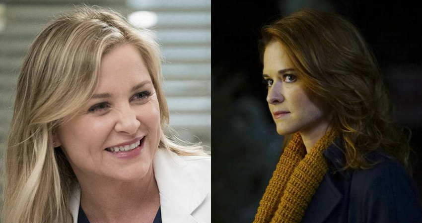 Sarah Drew and Jessica Capshaw will be returning to the show after almost a decade. (IMDb)