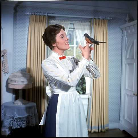 The skirt which Julie Andrews wore in the song 'A Spoon full of Sugar' will be up for auction. (IMDb)