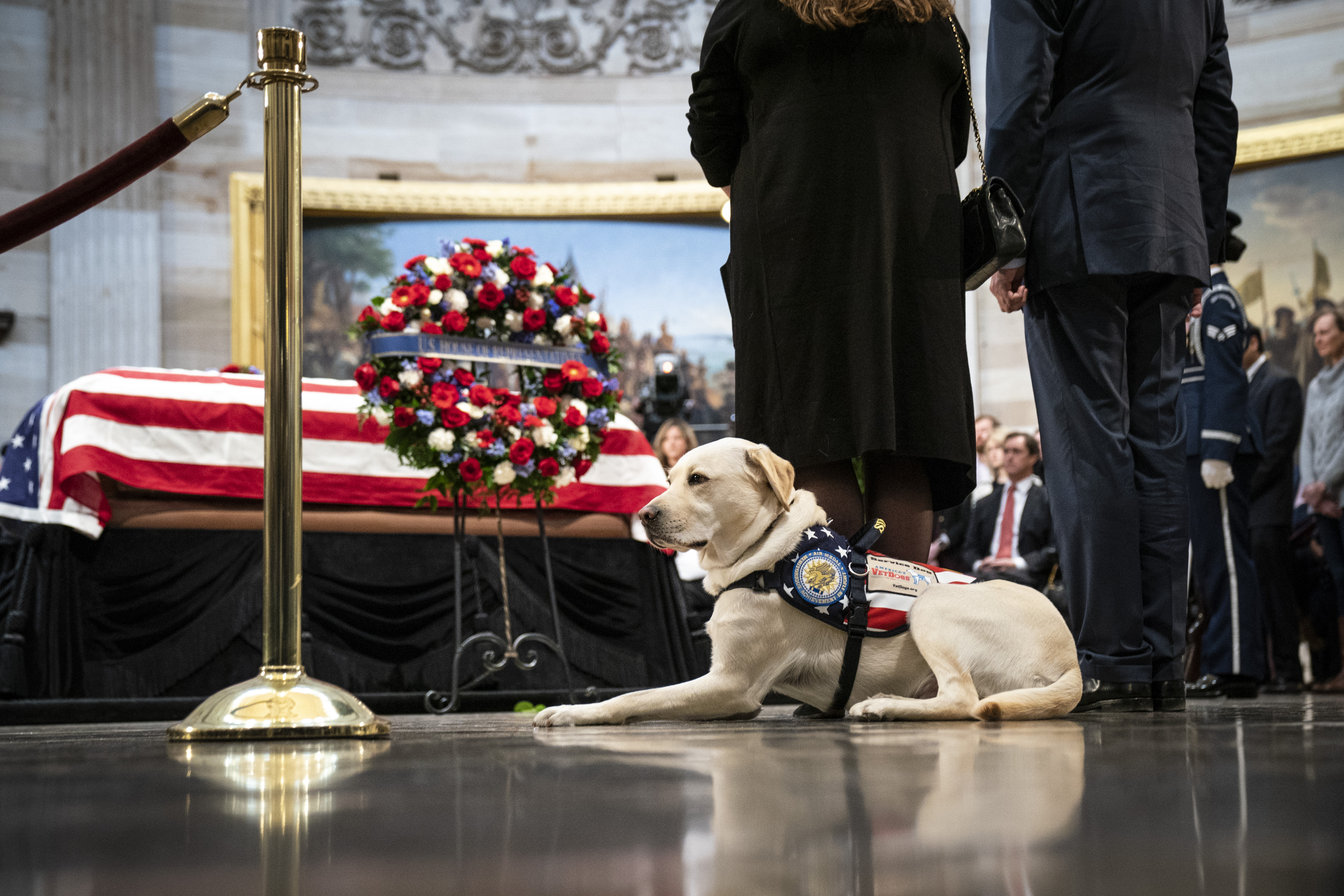 Sully, a yellow Labrador service dog for former President George H. W. Bush, sits near the casket of the late former President George H.W. Bush as he lies in state at the U.S. Capitol, December 4, 2018 in Washington, DC. A WWII combat veteran, Bush served as a member of Congress from Texas, ambassador to the United Nations, director of the CIA, vice president and 41st president of the United States. Bush will lie in state in the U.S. Capitol Rotunda until Wednesday morning.