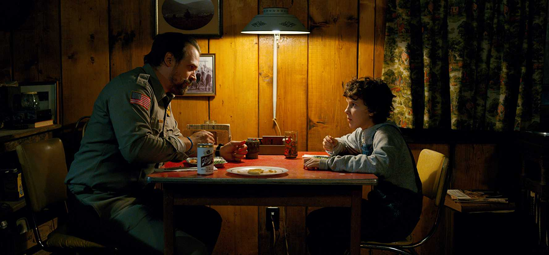When Eleven shifted in with Hopper, the CIA needed a new trap (IMDb)