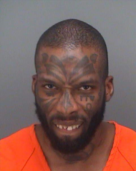 Ryan was arrested on charges of disorderly conduct (Source: Clearwater Police Department)