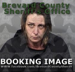 Morin is being held at the Brevard County Jail on a $40,000 bond (Source: Brevard County Sheriff's Office)