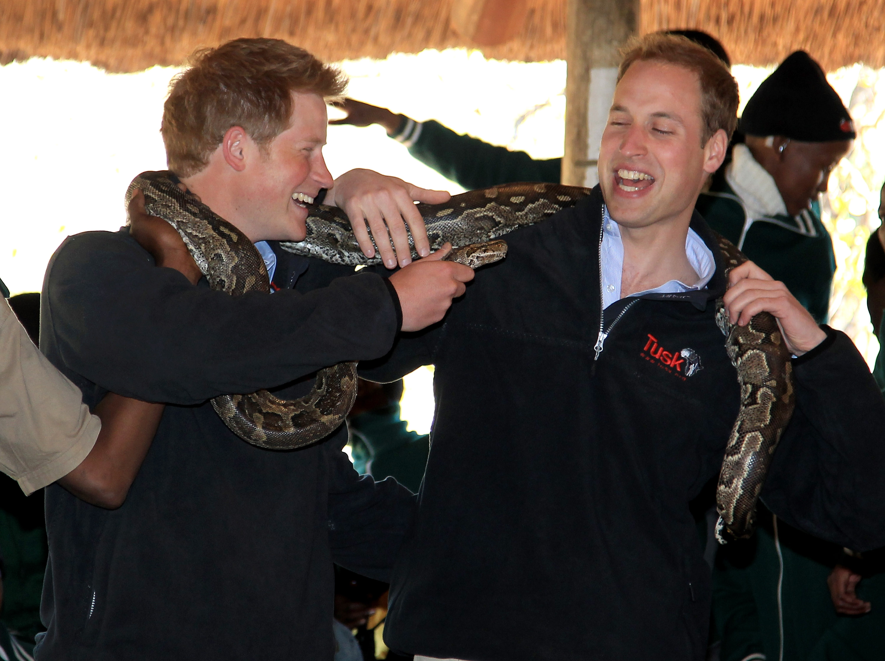 GABORONE, BOTSWANA - JUNE 15: Prince Harry and Prince William (R) hold an African rock python during a visit to Mokolodi Education Centre on June 15, 2010 in Gaborone, Botswana. The Princes are on a six day joint trip to Africa to visit charities they support across Botswana, Lesotho and finally South Africa. (Photo by Chris Jackson/Getty Images)