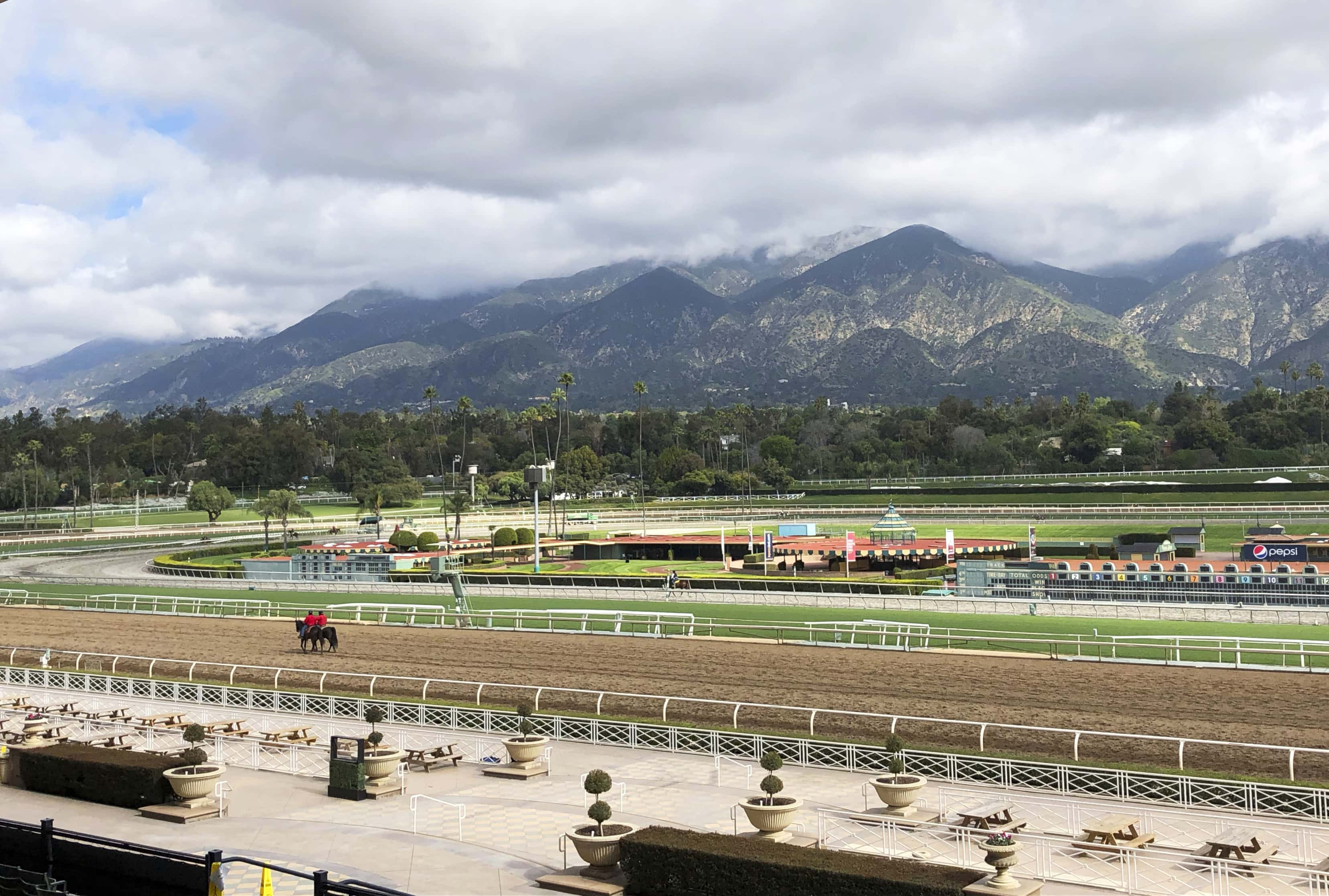 Santa Anita Race Horse Deaths Drugs Weather And Racing