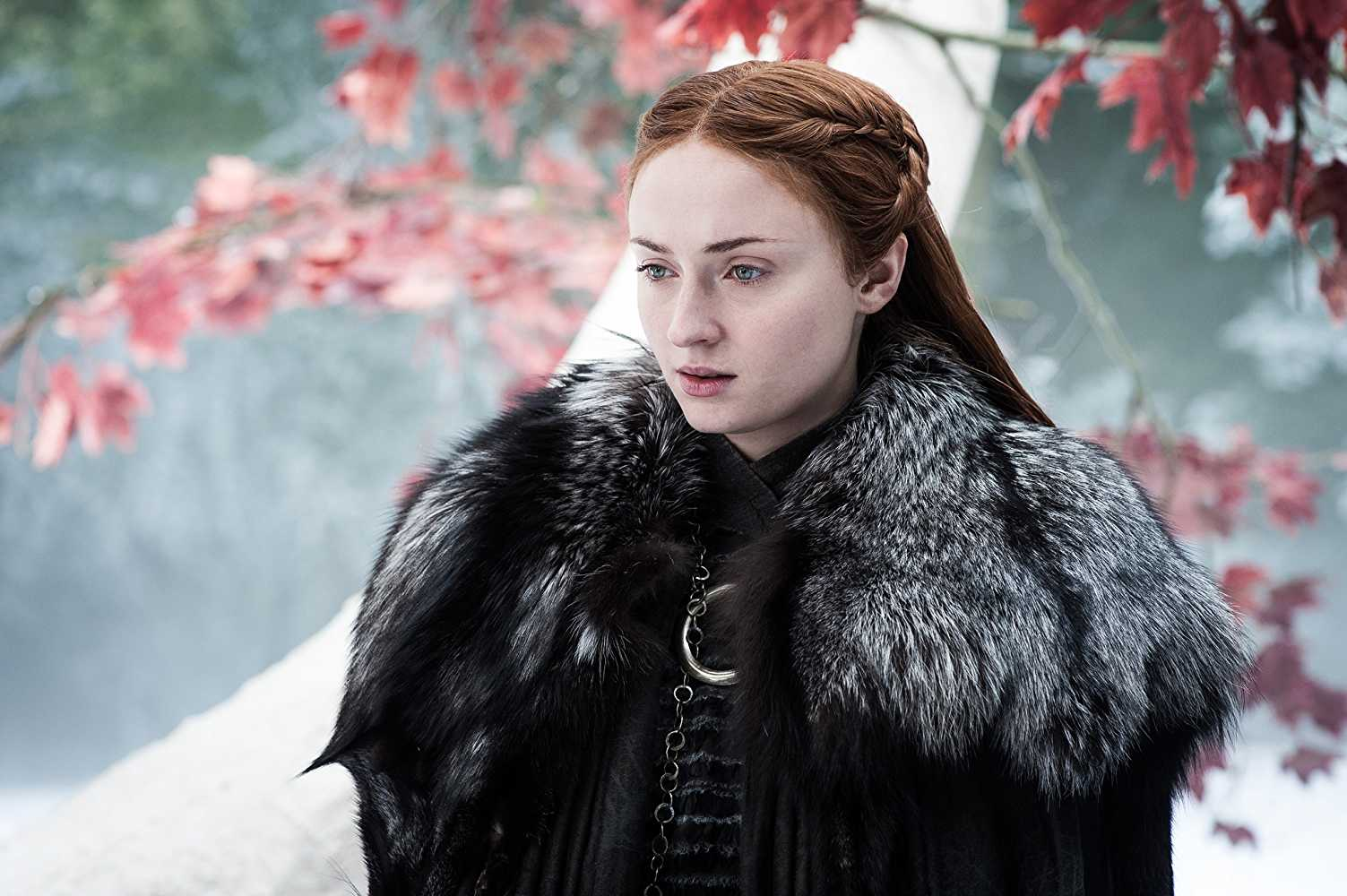 Sansa might not be satisfied by her brother's arragement. (IMDb)