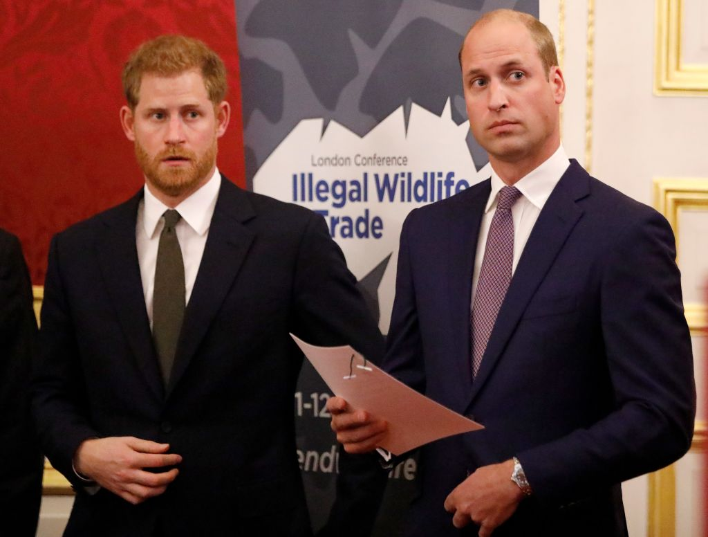 Prince William, Duke of Cambridge (R) and Prince Harry, Duke of Sussex, host a reception to officially open the 2018 Illegal Wildlife Trade Conference at St James' Palace on October 10, 2018, in London, England (Source: Tolga Akmen - WPA Pool / Getty Images)