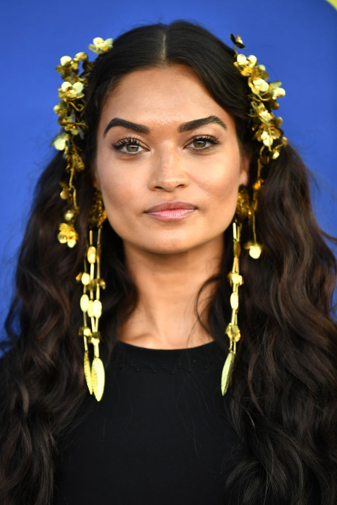 Shanina Shaik attends the 2018 CFDA Fashion Awards at Brooklyn Museum on June 4, 2018 in New York City. (Photo by Dimitrios Kambouris/Getty Images)