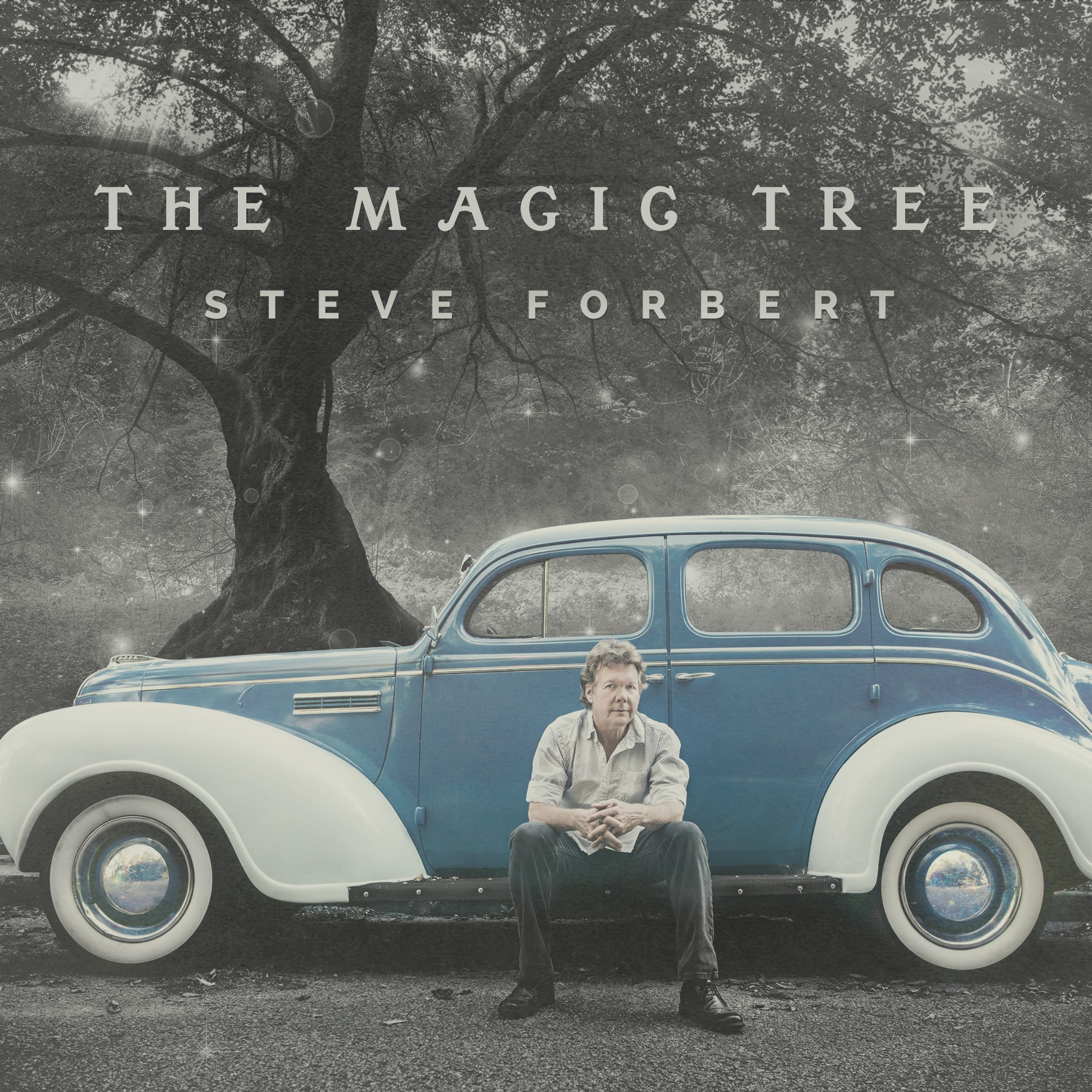 Album art for Steve Forbert's 'The Magic Tree'.