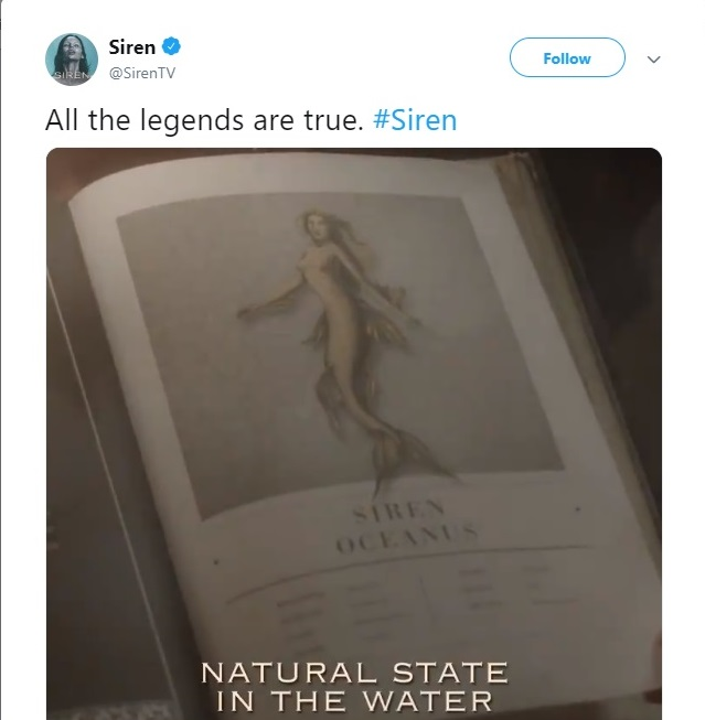Freeform's latest promotional tagline for 'Siren.' Source: Twitter