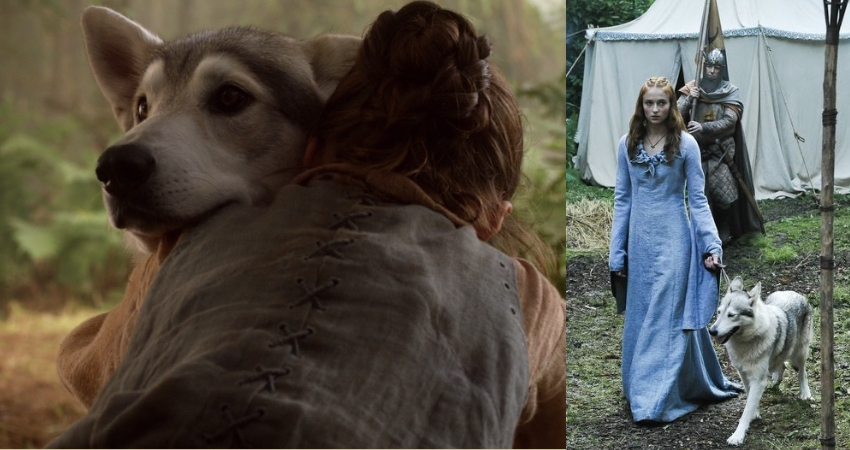 Both the sisters lost their direwolves when the Lannisters came in. (IMDb)