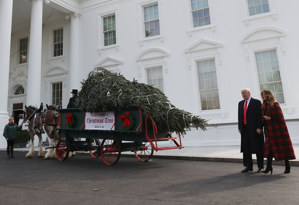U.S. President Donald Trump and first lady Melania Trump inspect the North Carolina grown Fraser Fir Christmas Tree at the North Portico as it makes its way to the Blue Room for display at the White House on November 19, 2018 in Washington, DC. (Photo by Mark Wilson/Getty Images)