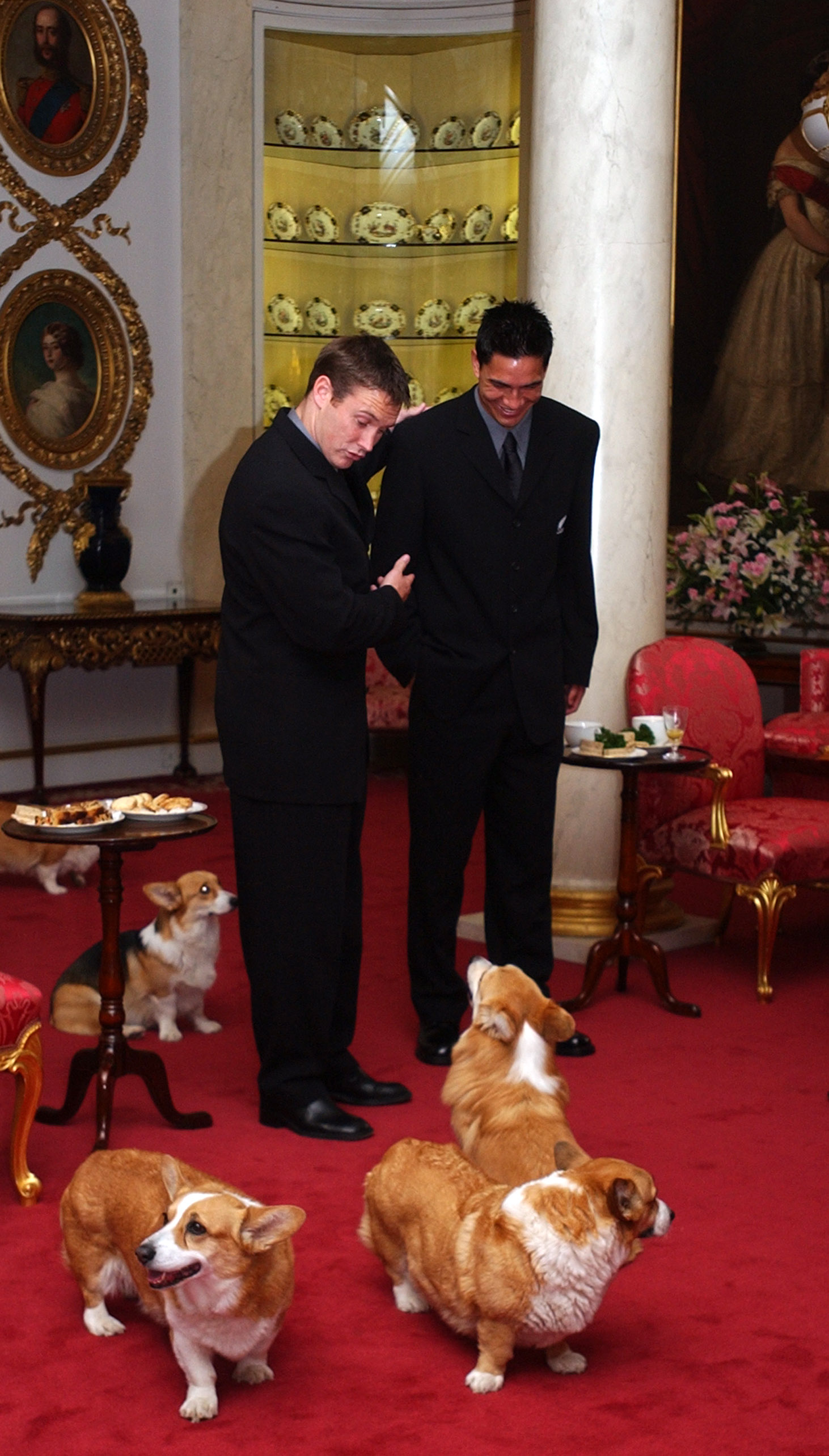 Andrew Mehrtens introduces young All Black tourist Regan King to one of Her Majesty Queen Elizabeth II corgies at an afternoon tea for the team at Buckingham Palace, Tuesday. (Getty Images)
